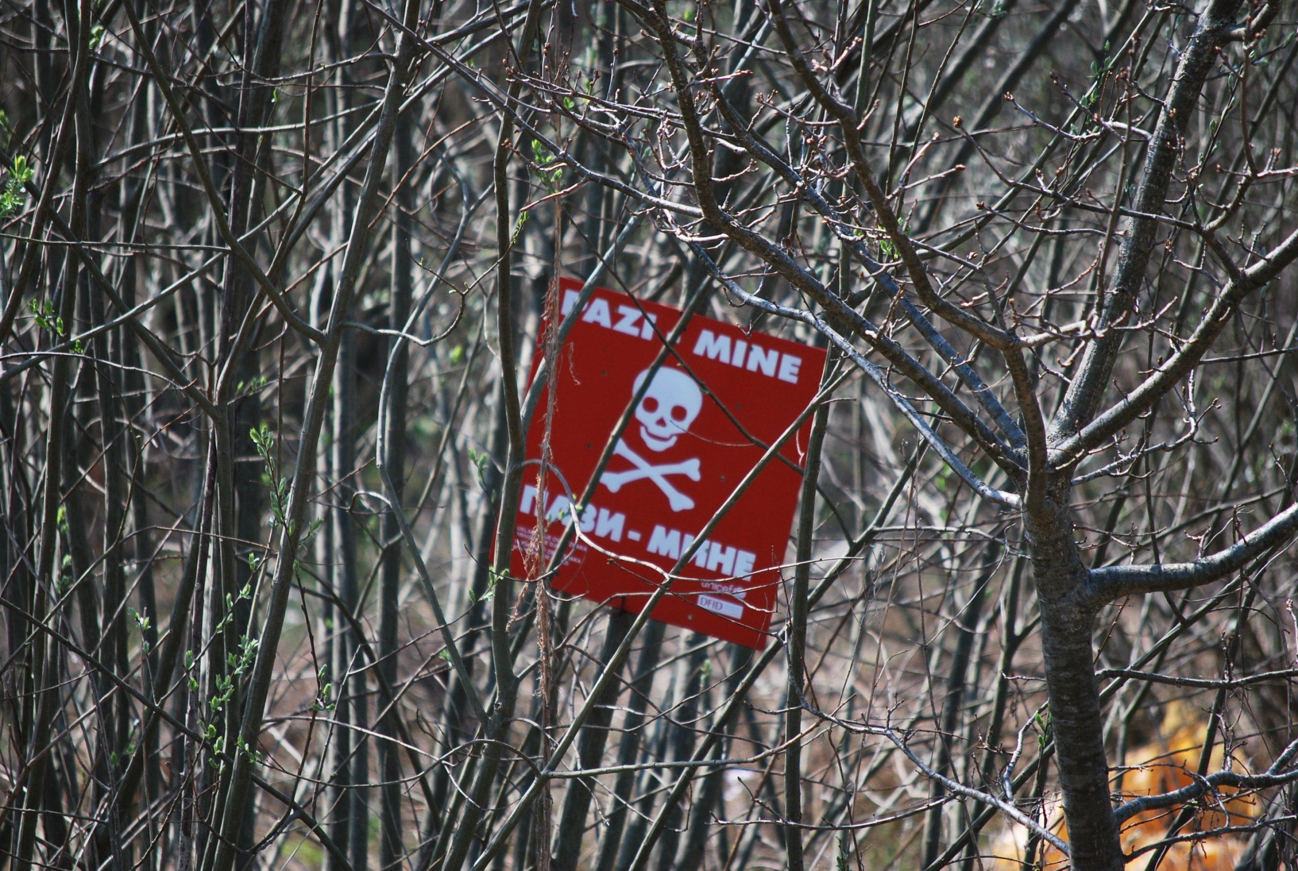 Schild mit Hinweis auf eine tödliche Gefahr in einem Gestrüpp